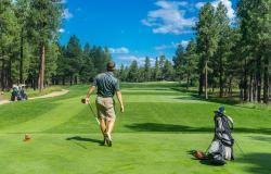 Residence sul lago di Garda e splendidi campi da golf