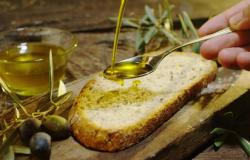 Residence sul lago di Garda: ottima annata per l'olio DOP