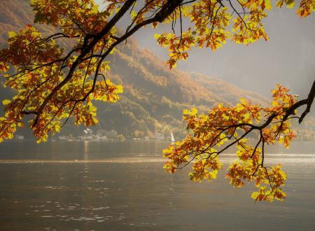 Autunno lago di Garda